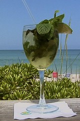 a mojito on the beach in February...success!