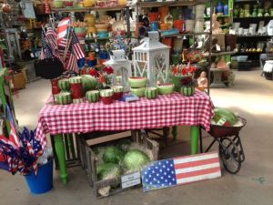 Patriotic and summery swing shop from TGtbT.com