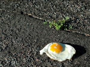 Hot enough to fry an egg on the sidewalk? A creative consignment solution from TGtbT.com