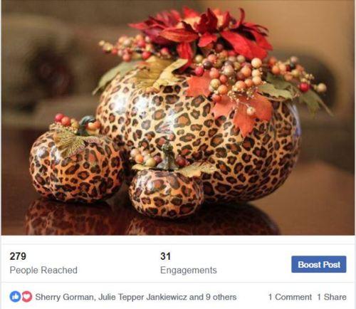 leopard pumpkin